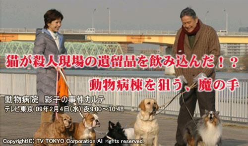 TV東京 水曜ミステリー9