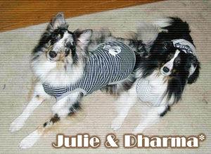 ジュリー&ダーマちゃん