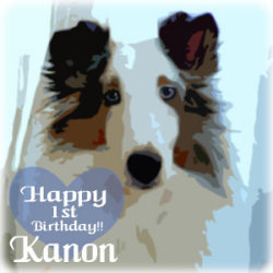 Happy birthday to Kanon!