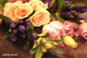 りんどうと桔梗の花束