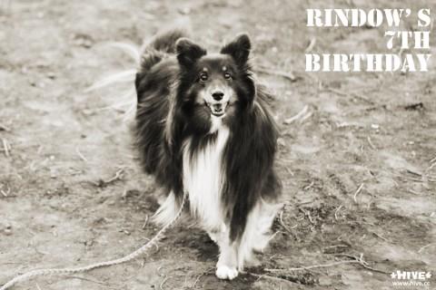 Birthday photo2