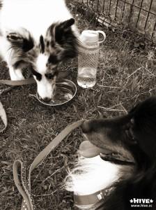 お水を飲んで、休憩